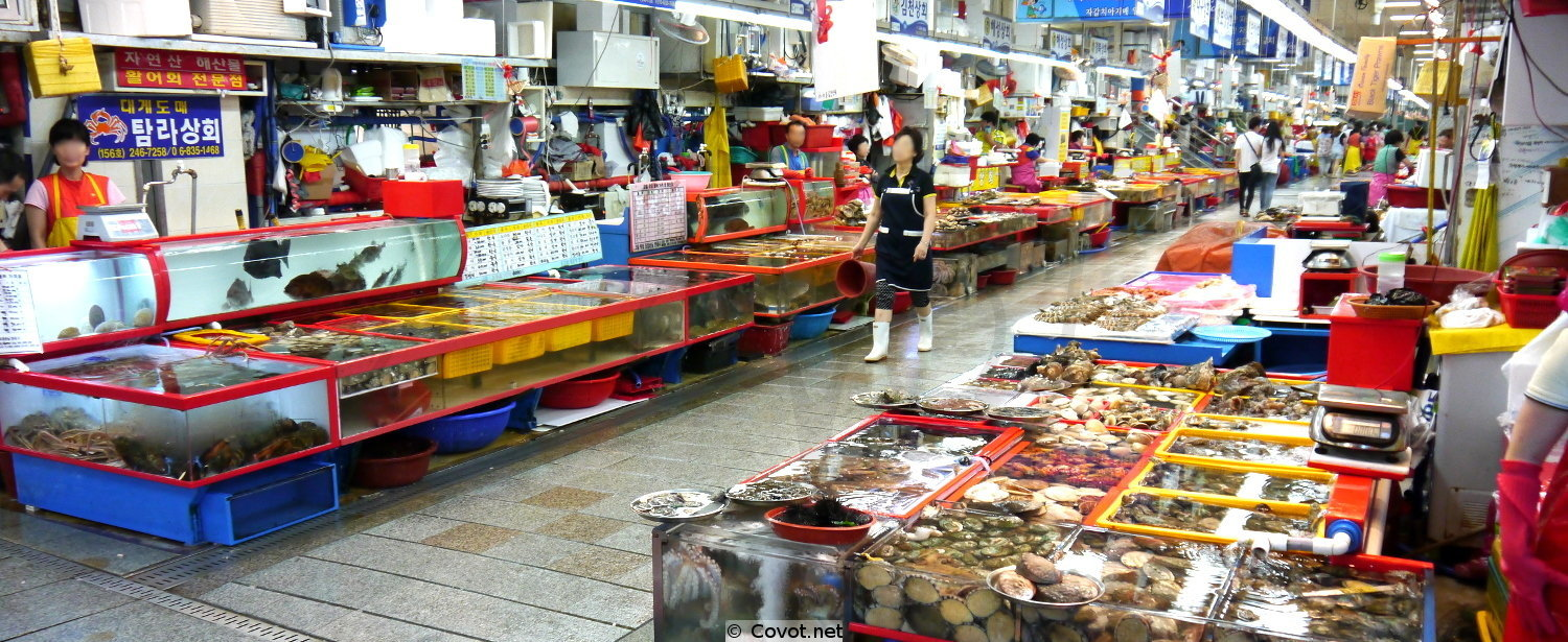 Korean fish market
